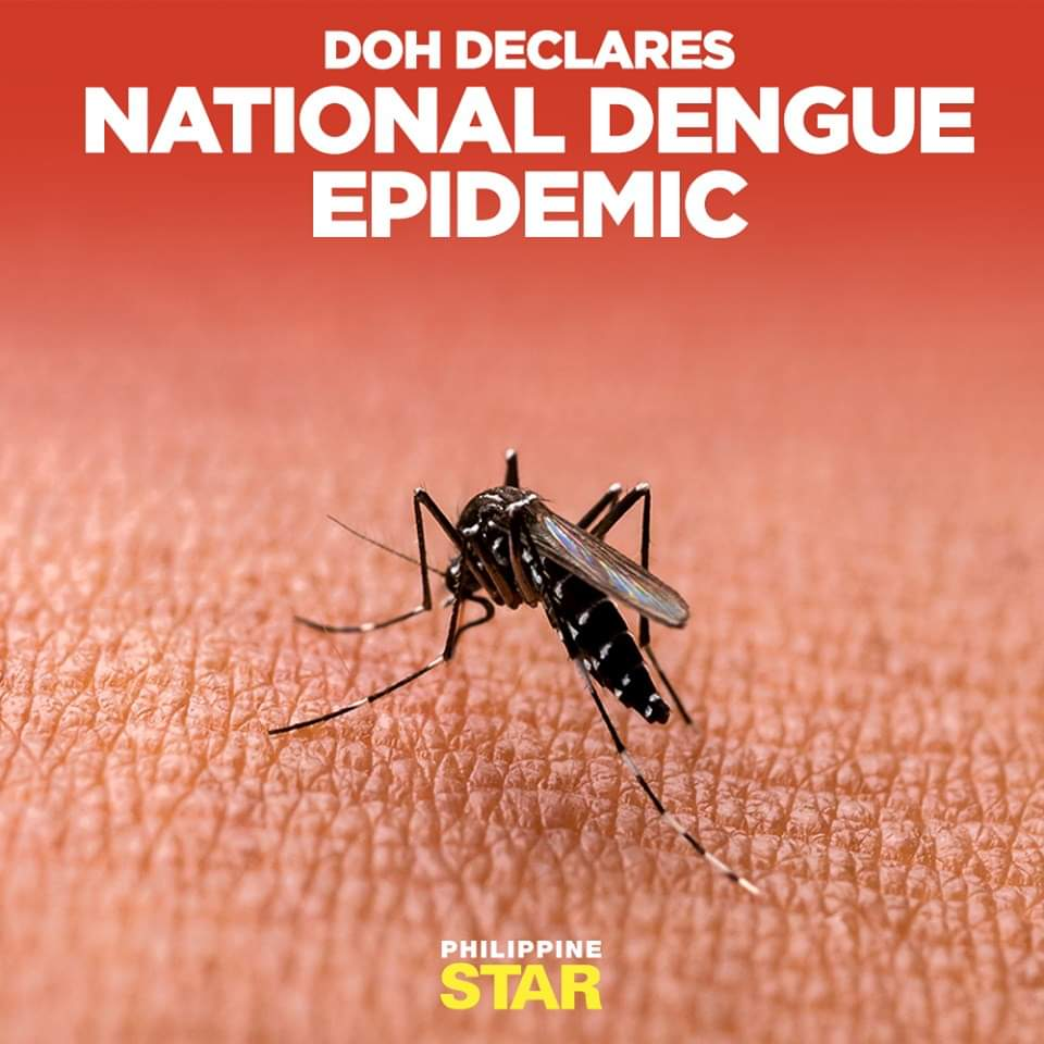 Declaration of a National Dengue Alert by the DOH